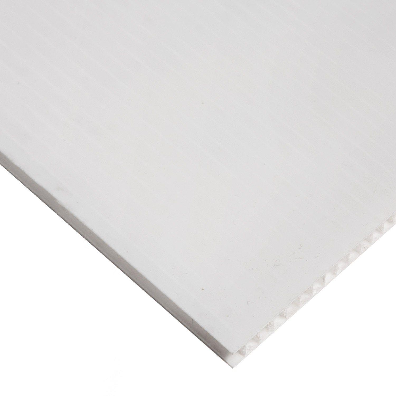 Plaque Polycarbonate Alveolaire Polycarbonate Alveolaire Blanc Laiteux Relief L Plaque Polycarbonate Alveolaire Polycarbonate Et Plaque