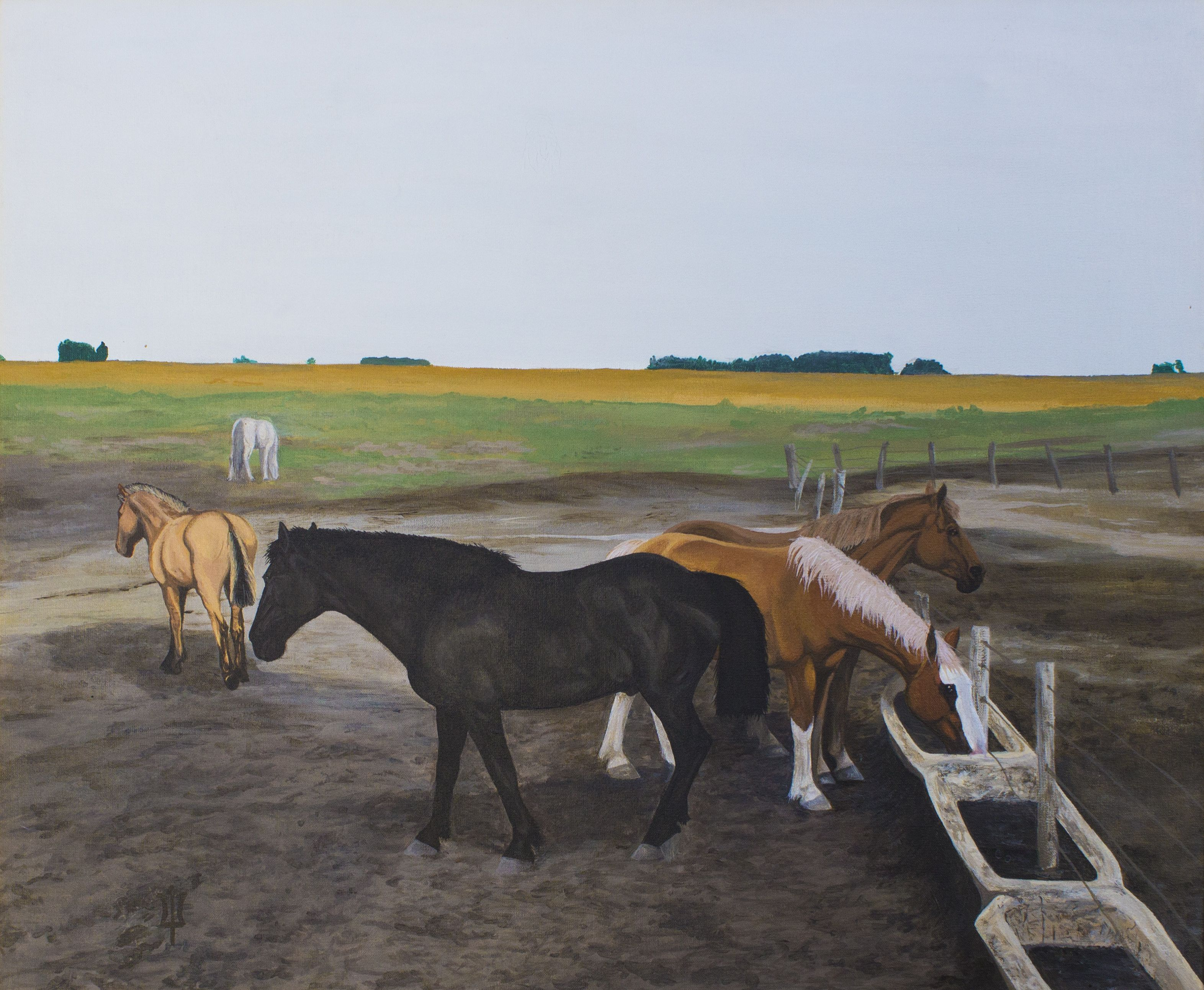 "Gabriela Boiero. ""Quiet morning"" a group of Criollo horses drinking orderly. Acrylic 50 x 60 cm."