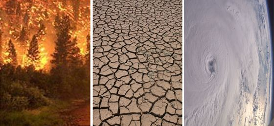 Global Climate Change: Effects | Off the grid, Planets and Ecology