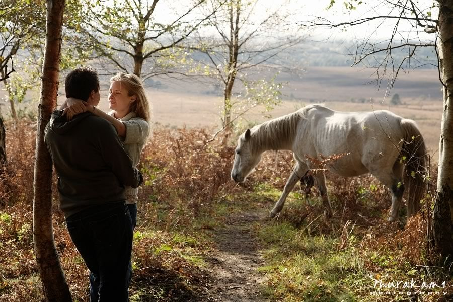 New Forrest Engagment Pony Image