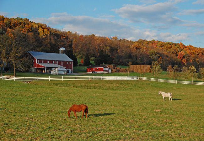 Country farm&home decor