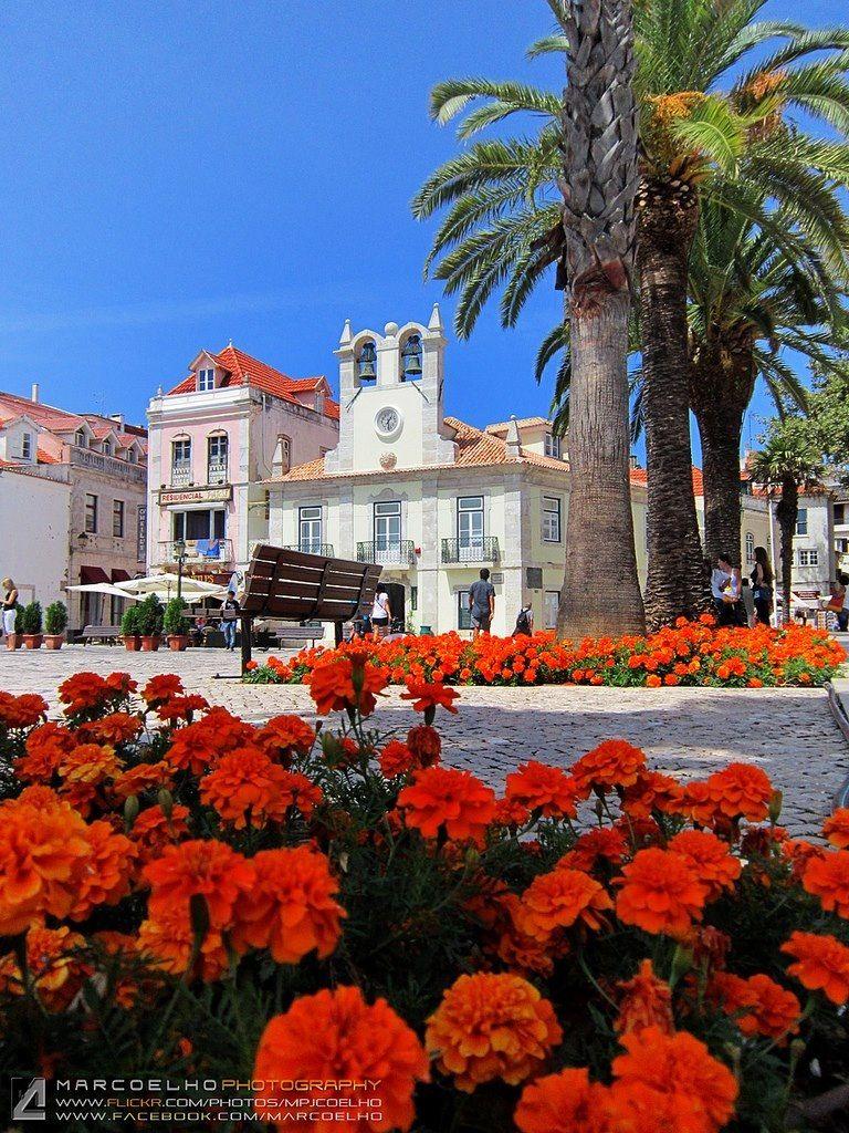 Cascais Portugal Portugal Ericeira Portugal Lisboa