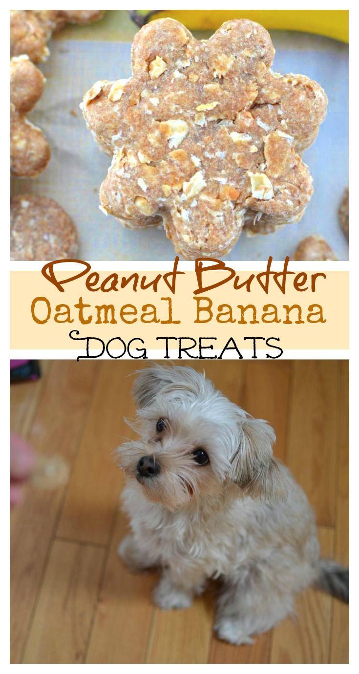 Peanut Butter Oatmeal Banana Dog Treats Recipe The Cozy Cook