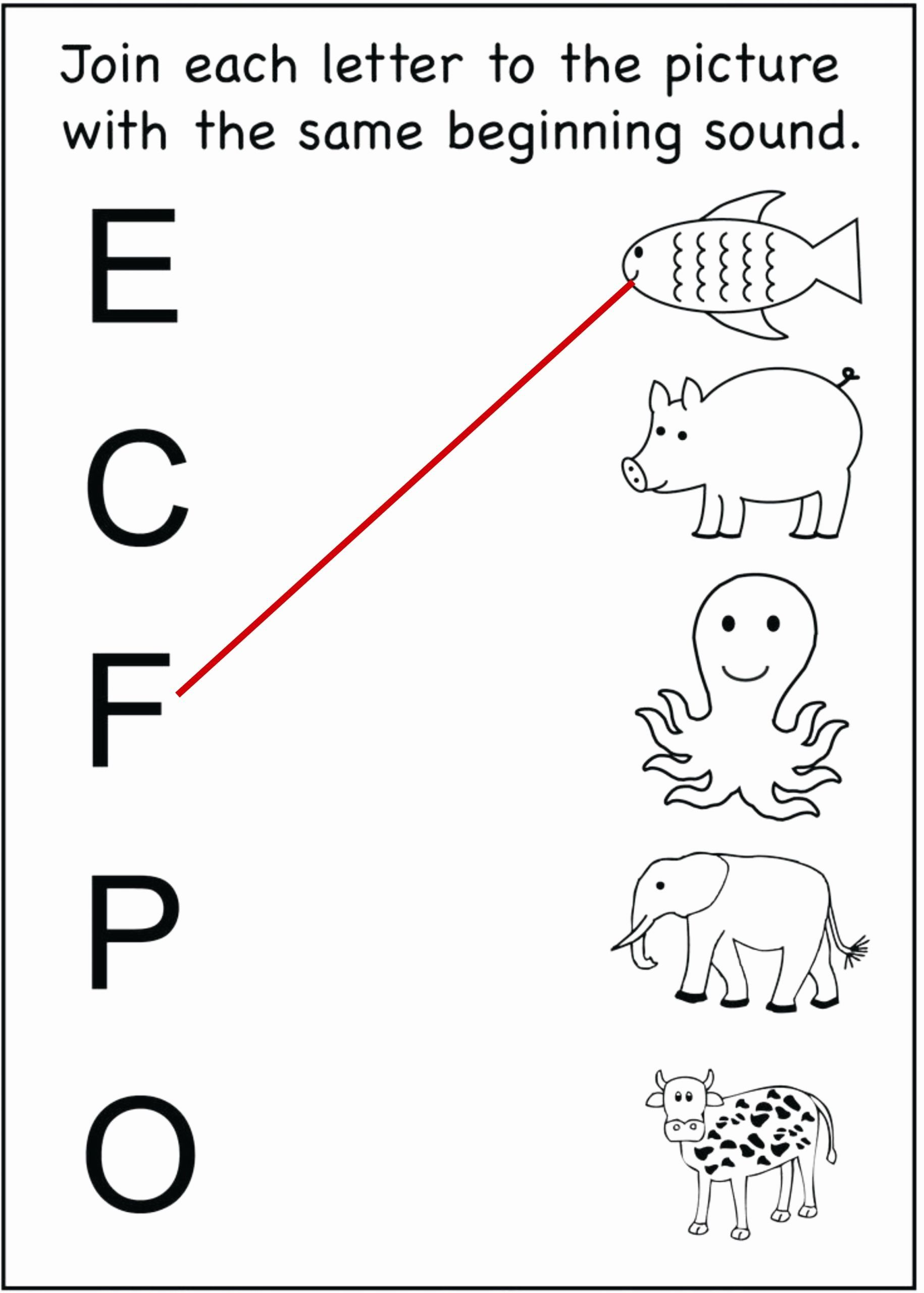 Kids Fun Worksheets Preschool In