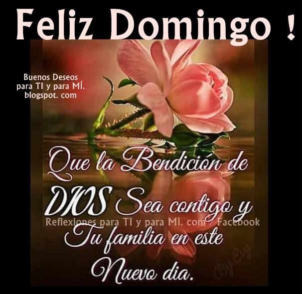 Feliz Domingo Que La Bendicion De Dios Sea Contigo Y Tu Familia En