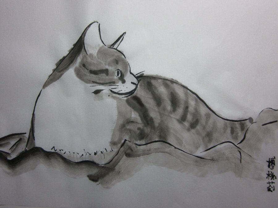 an attempt at sumi e on my cat totoro sumi e cat