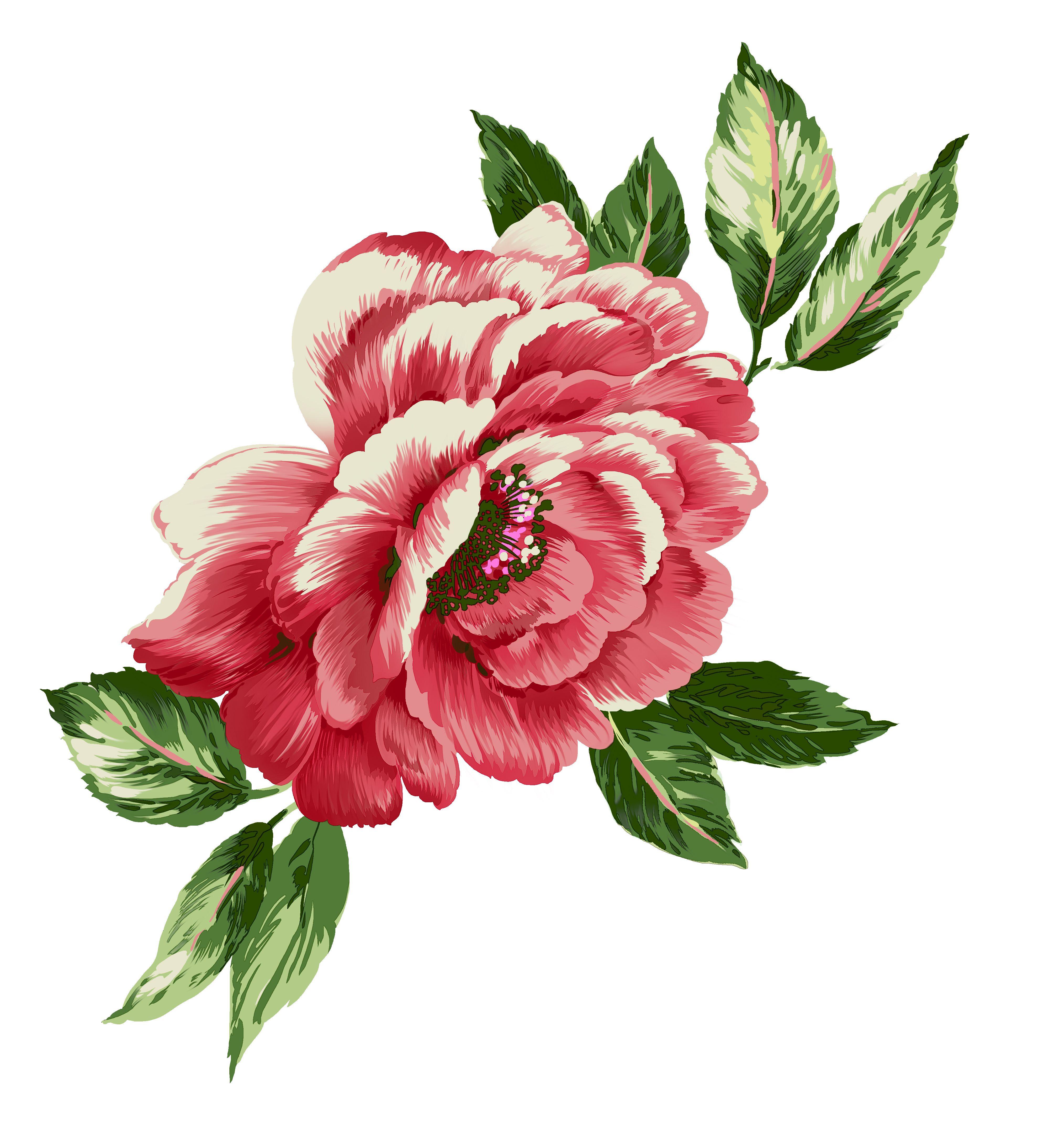 Pin von Rosa Estelli Szczepanovski auf Cortinas | Pinterest | Blumen
