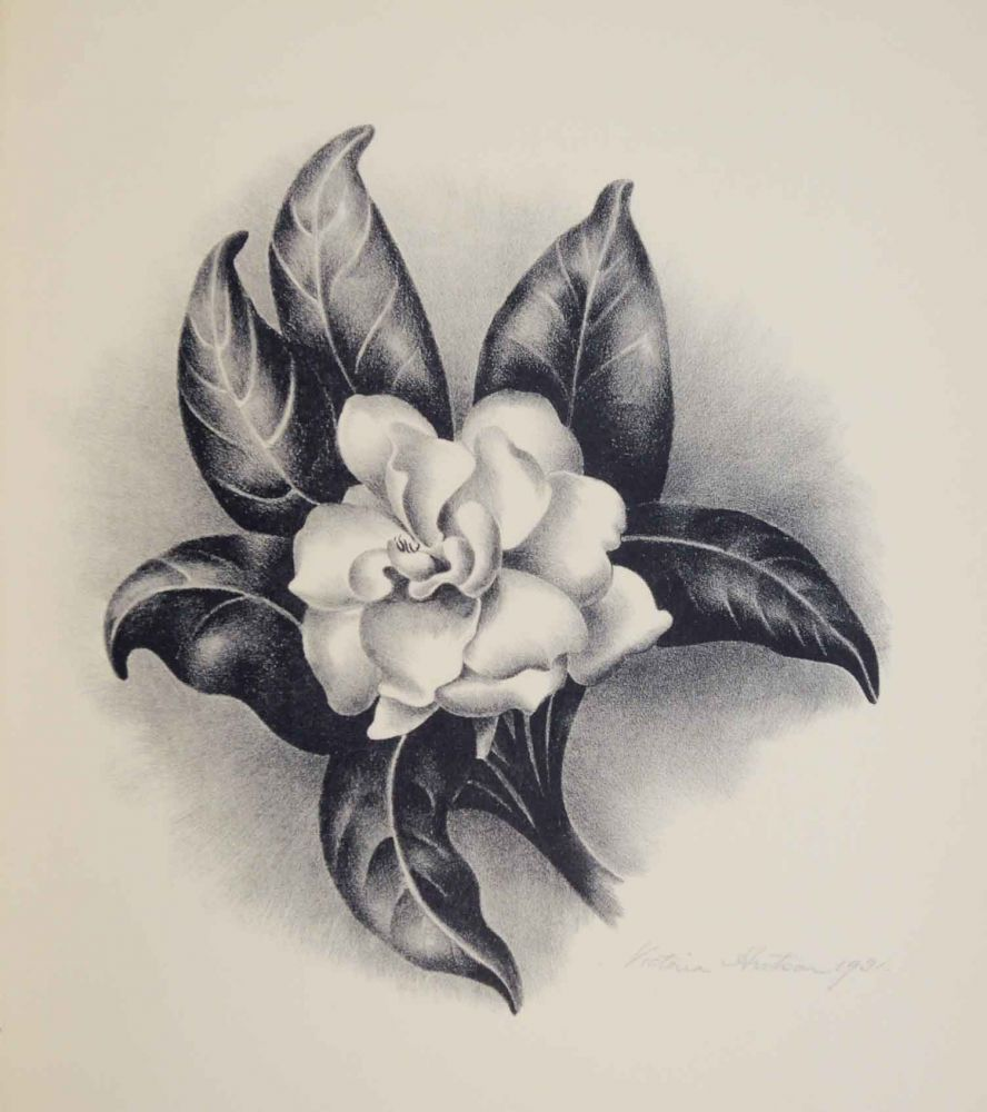 Gardenia Lithograph Google Search Gardenia Tattoo Flower Tattoos Tattoos