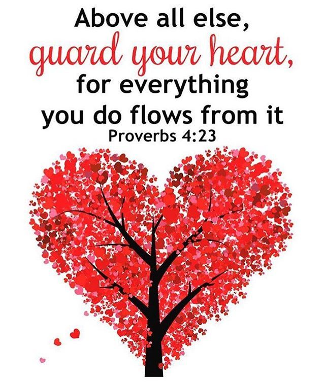 Guard your heart..#godlycouple #godlyman #godlywoman #relationshipgoals #godlydating #christiandating #christianmarriage #christianmingle #graftedlove