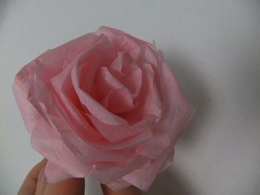 Spiral Rolled Tissue Paper Rose Tissue Paper Roses Paper