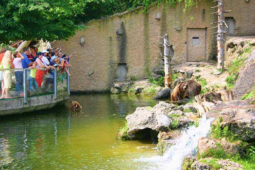 Tierpark Salzburg Salzburger Zoo Tierpark Zoo Stadt Salzburg