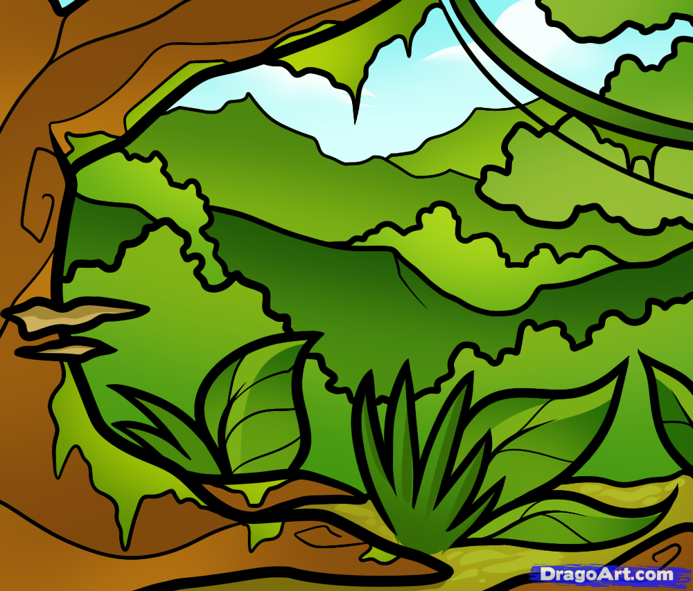 How To Draw A Jungle For Kids by Dawn Jungle drawing