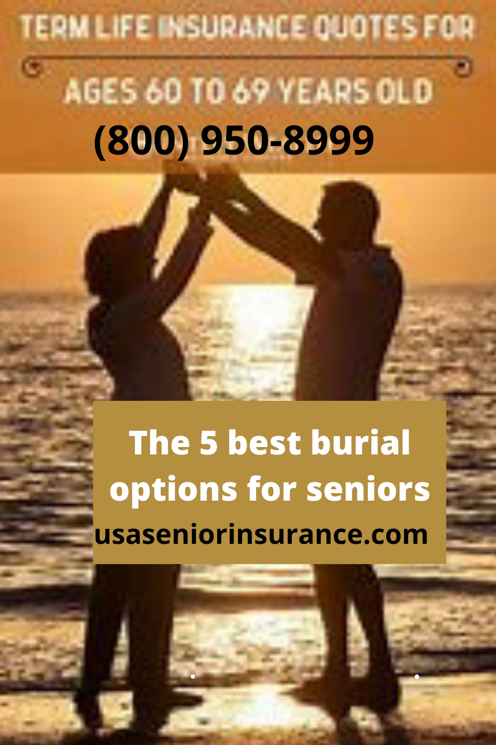 The 5 Best Burial Options For Seniors In 2020 Life Insurance Policy Life Insurance Types Universal Life Insurance
