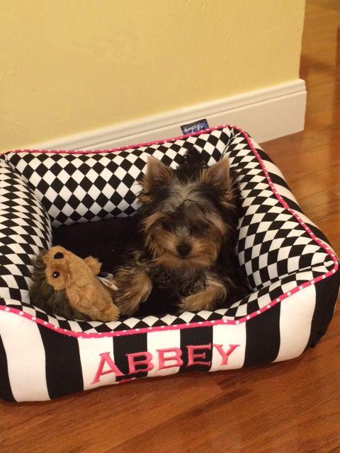 See What I Ve Designed At J Adore Custom Pet Beds Pet Beds Custom Pet Bed Custom Dog Beds
