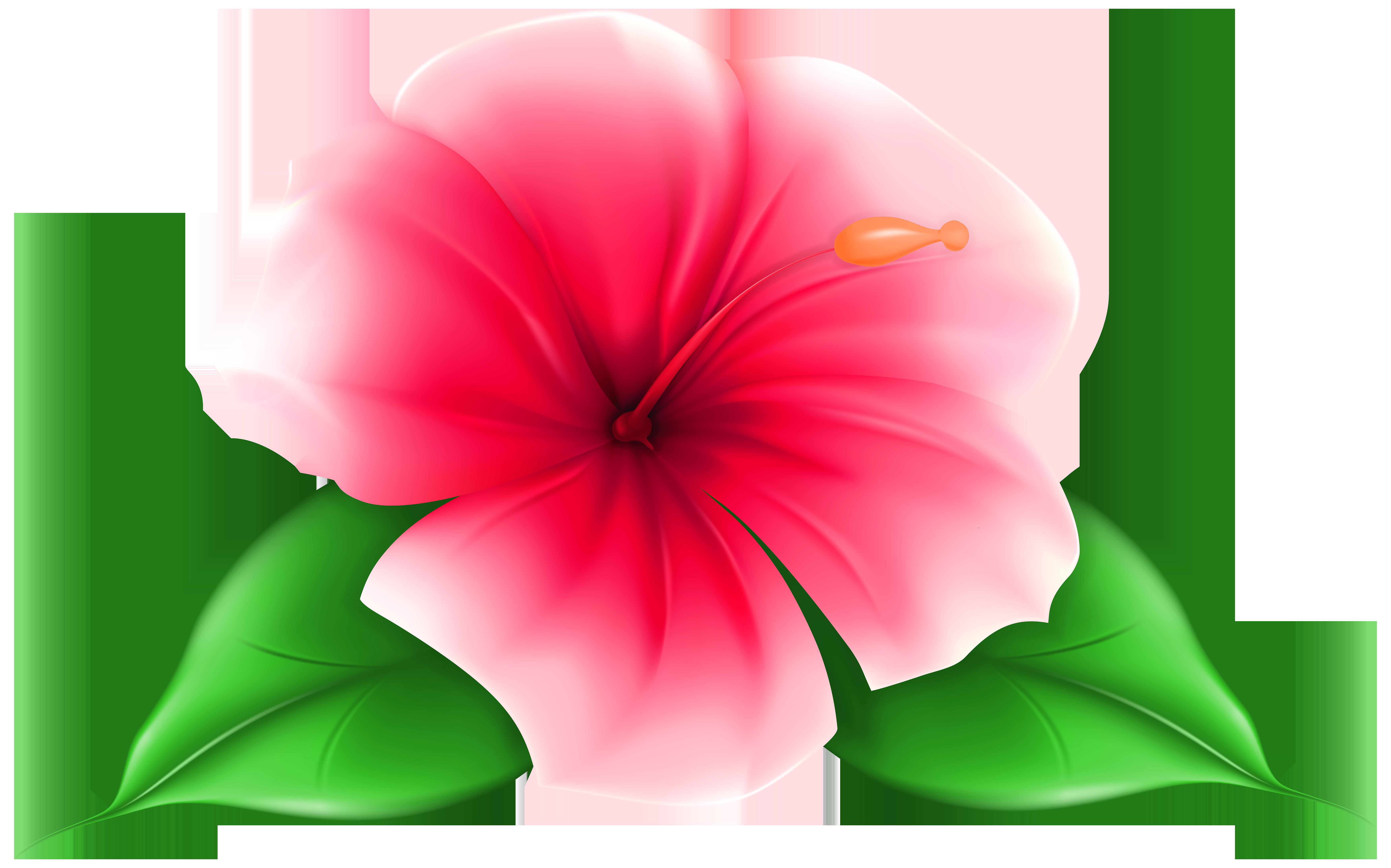 Hawaiian aloha tropical flores pinterest exotic flowers art hawaiian aloha tropical izmirmasajfo Image collections