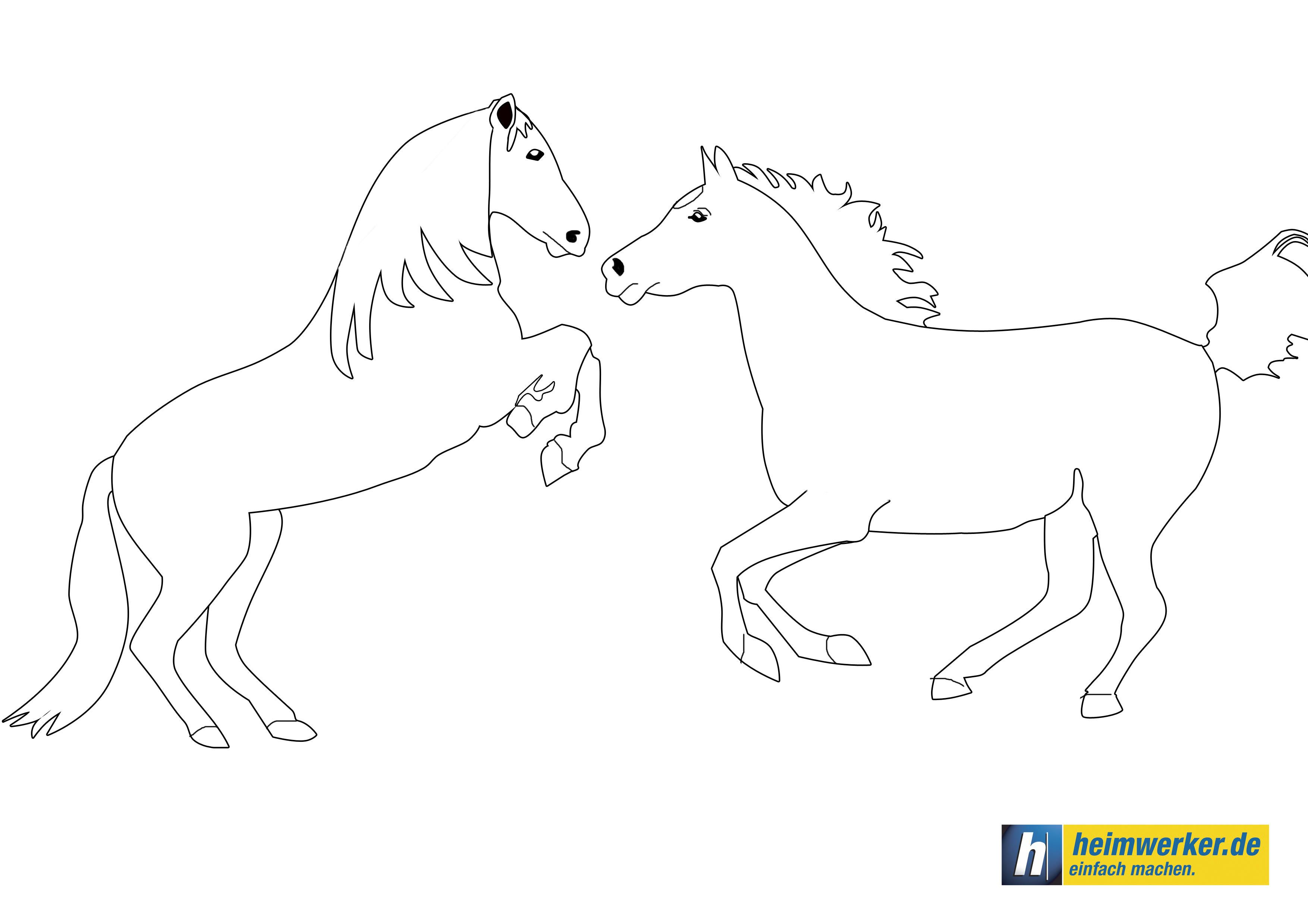 Image Result For Ausmalbilder Pferd Schalfend Ausmalen Ausmalbilder Bilder Zum Ausdrucken Kostenlos