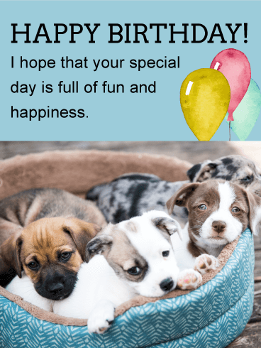 Cute Puppies Animal Birthday Card Your Birthday Friend Will Squeal