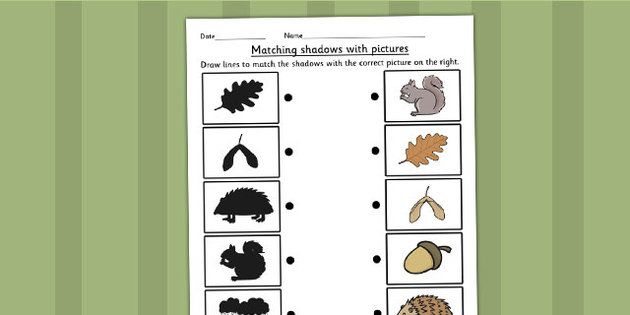 Autumn Shadow Matching Worksheet - This handy autumn themed ...