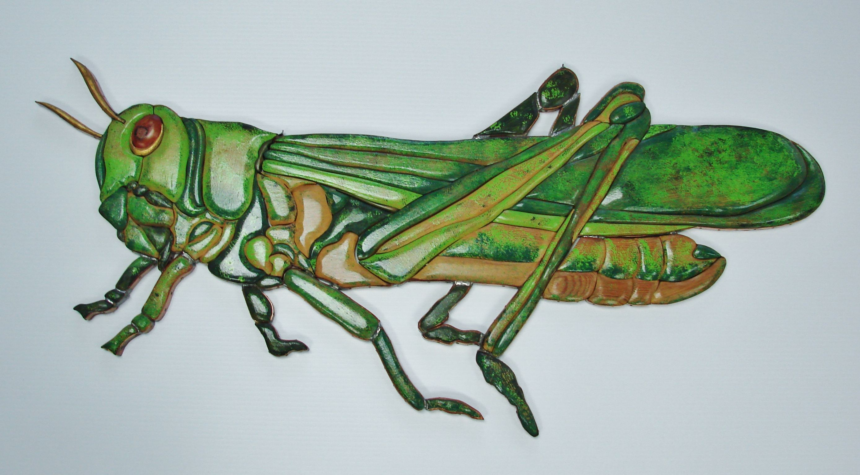 Wood intarsia grasshopper made of pine and painted with acrylic