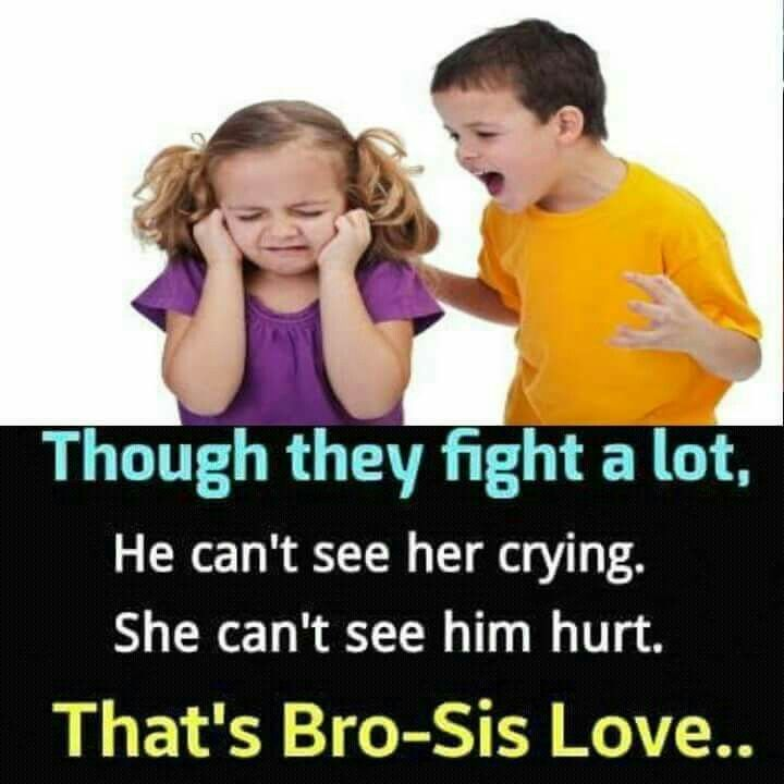 essay on brother and sister relationship facebook