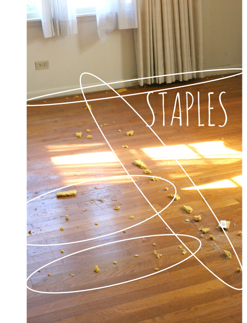 How To Remove Carpet Staples From Wood Floors The Tool