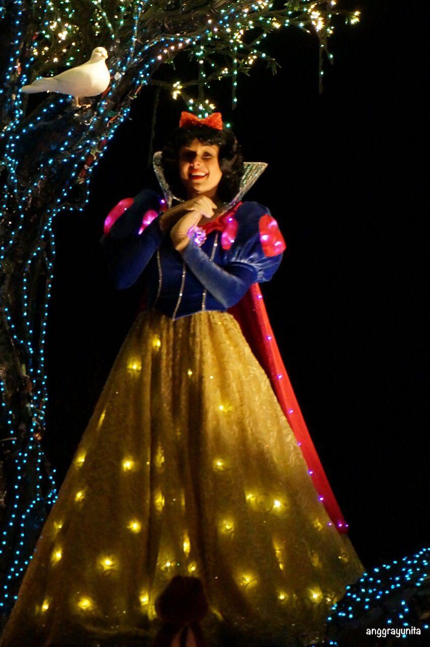 Snow White at the Closing Parade, Tokyo Disneyland. (Feb, 2014)