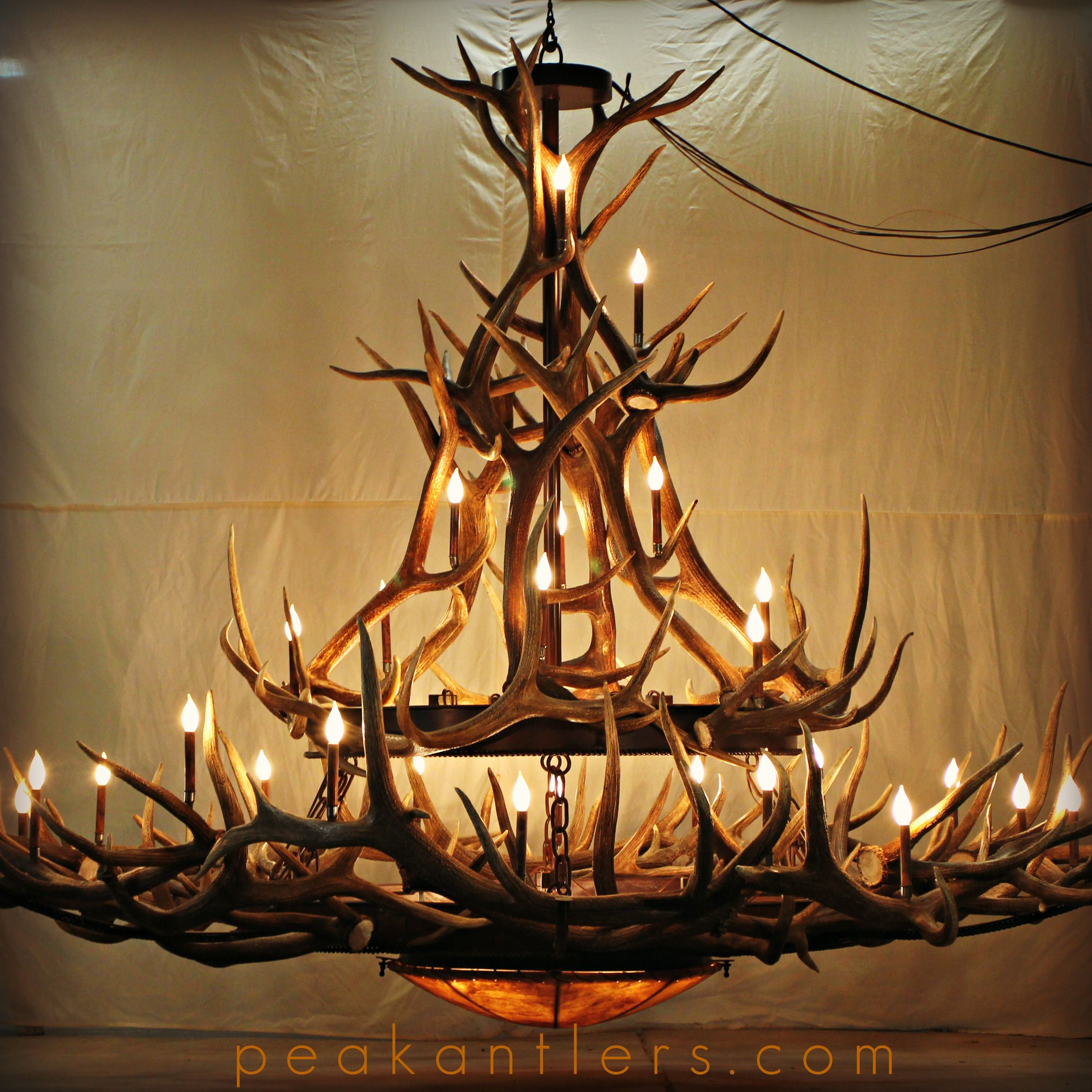 Two Tiered Elk Antler Chandelier Took 8 Weeks To Complete Used 33 Sheds