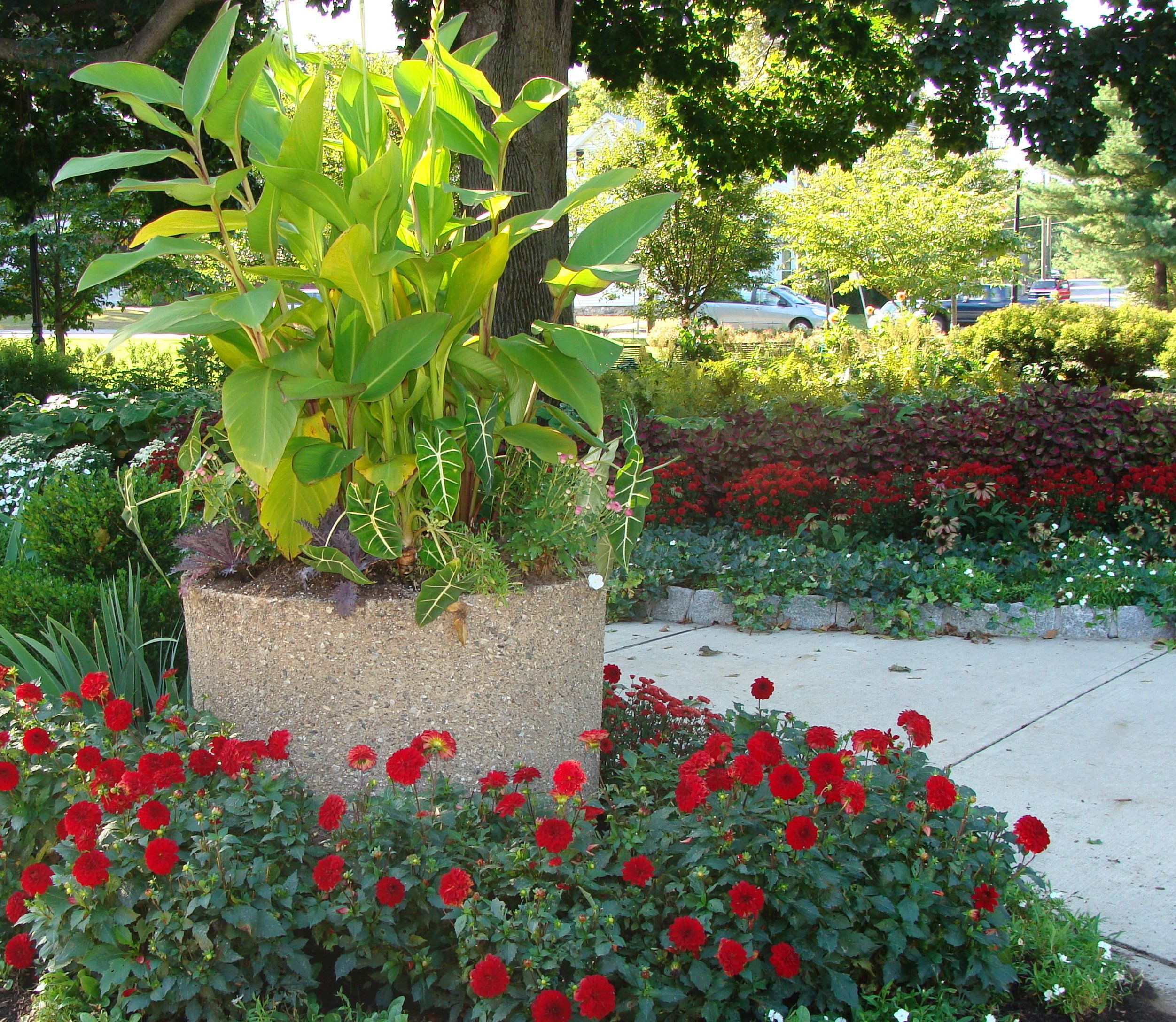 Landscape Design, The Garden Goddess of Litchfield, Landscape Development, Landscapers