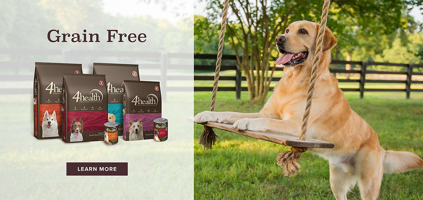 3000 5 Star Reviews Learn More About The Grain Free Formula
