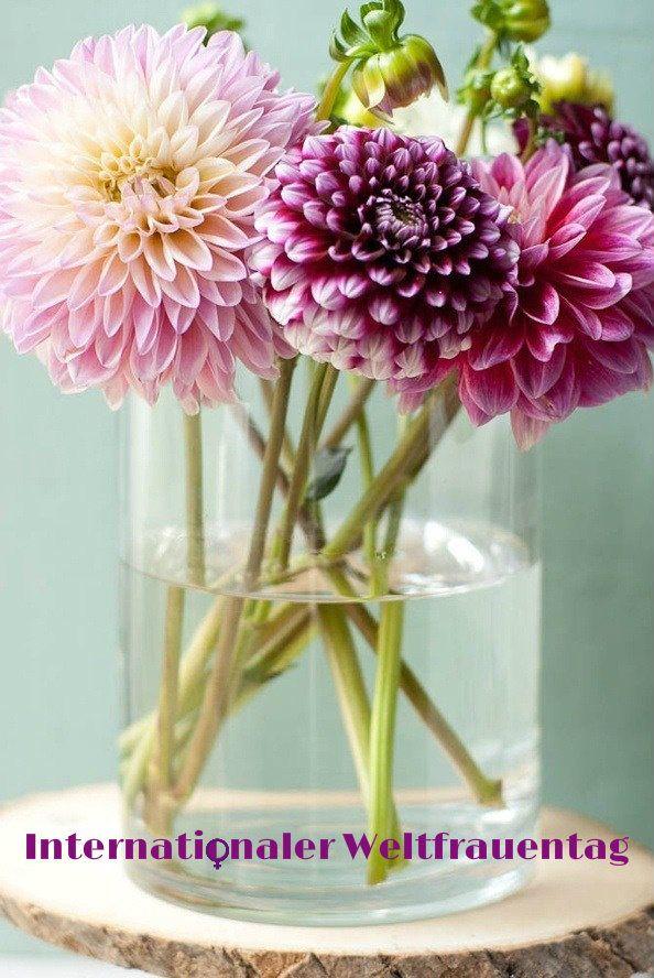 Liebe Frauen wir wünschen Euch einen schönen Weltfrauentag und ein schönes Wochenende!  http://www.granit-naturstein-marmor.de/