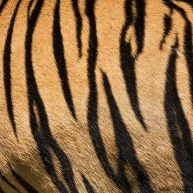 How To Make Tiger Stripe Patterns Ehow Tiger Stripe Tattoo Stripes Pattern Tiger Stripes