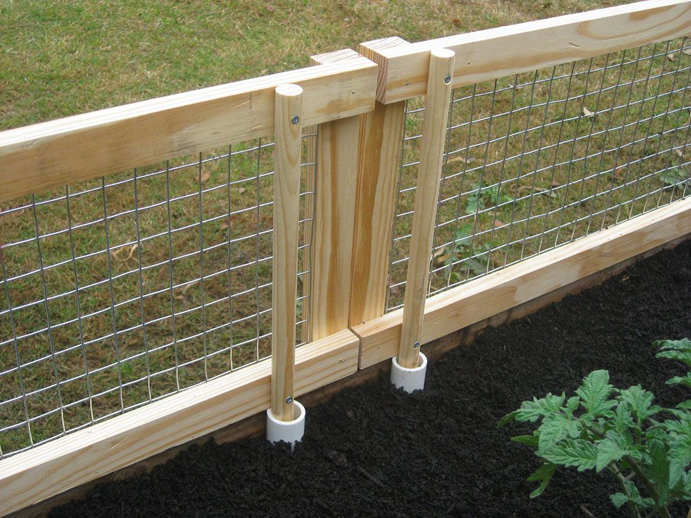 Diy Raised Bed Removable Pest Gate Vegetable Garden Raised