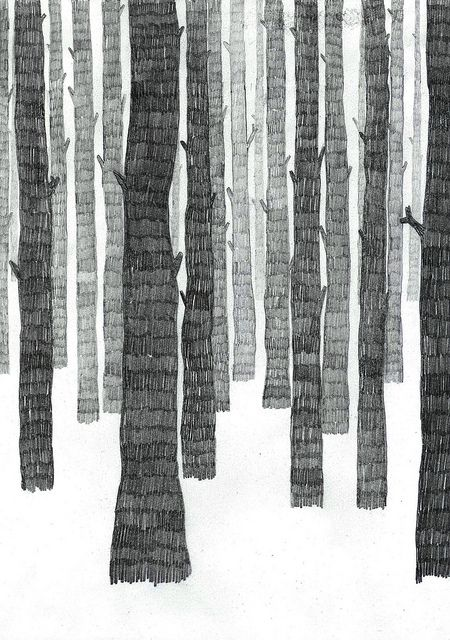bleistift-Wald