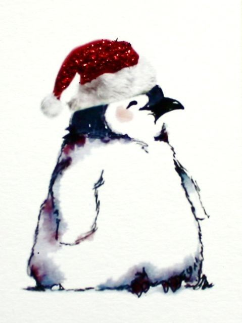 Awwww He S So Cute Cards Pinterest Penguins Penguin