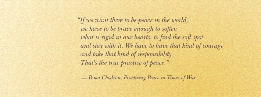 Pema Chodron Quotes Stunning Pema Chodron  Mulatto Diaries  Inspiration Pema Chodrin Quotes . Decorating Design