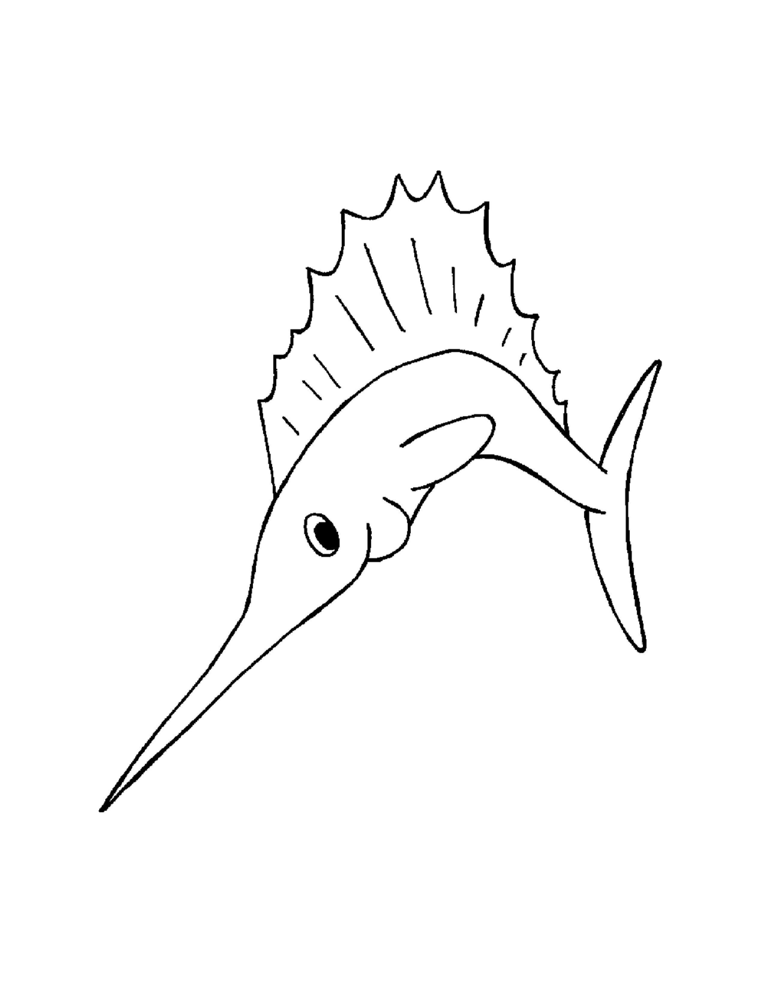 Sea Fish Coloring Book