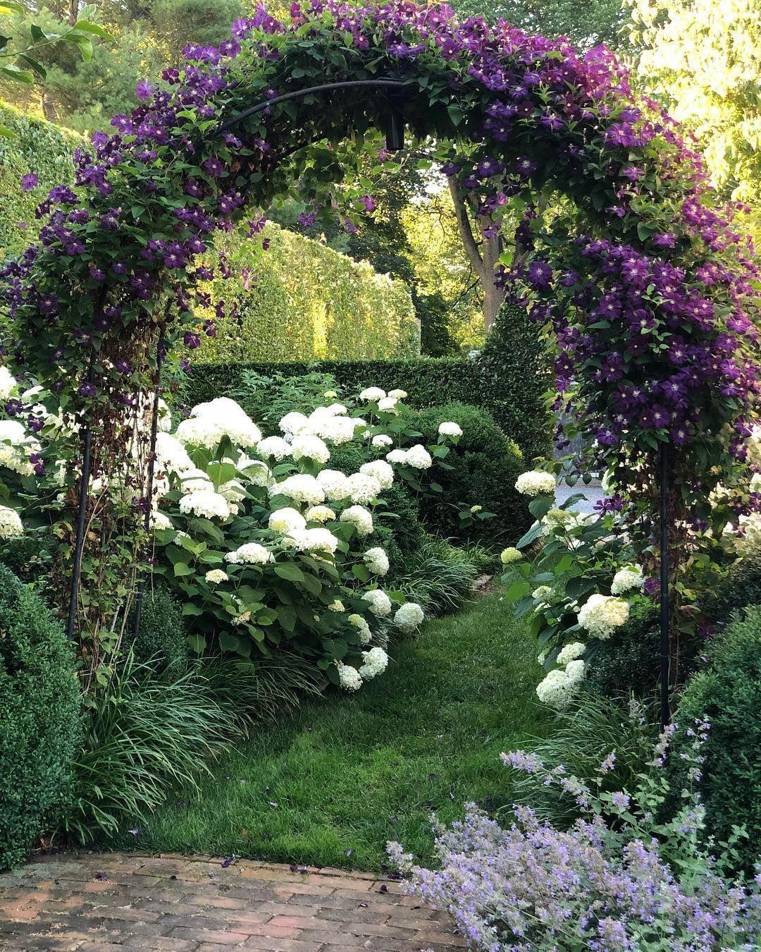 Ina Garten On Instagram Isn T It Romantic Clematis Hydrangea Beautifulflowersromantic Hydrangea Landscaping Cottage Garden Garden Inspiration