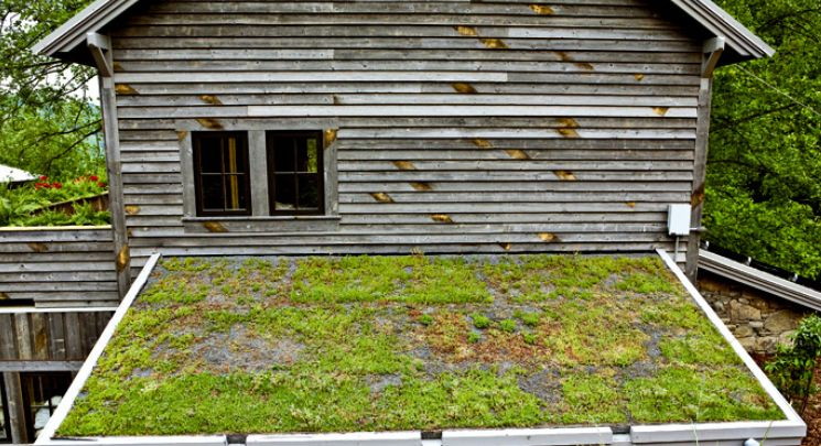 Real Reclaimed Wood Products Wood Siding Exterior Reclaimed Wood Siding Reclaimed Wood Projects