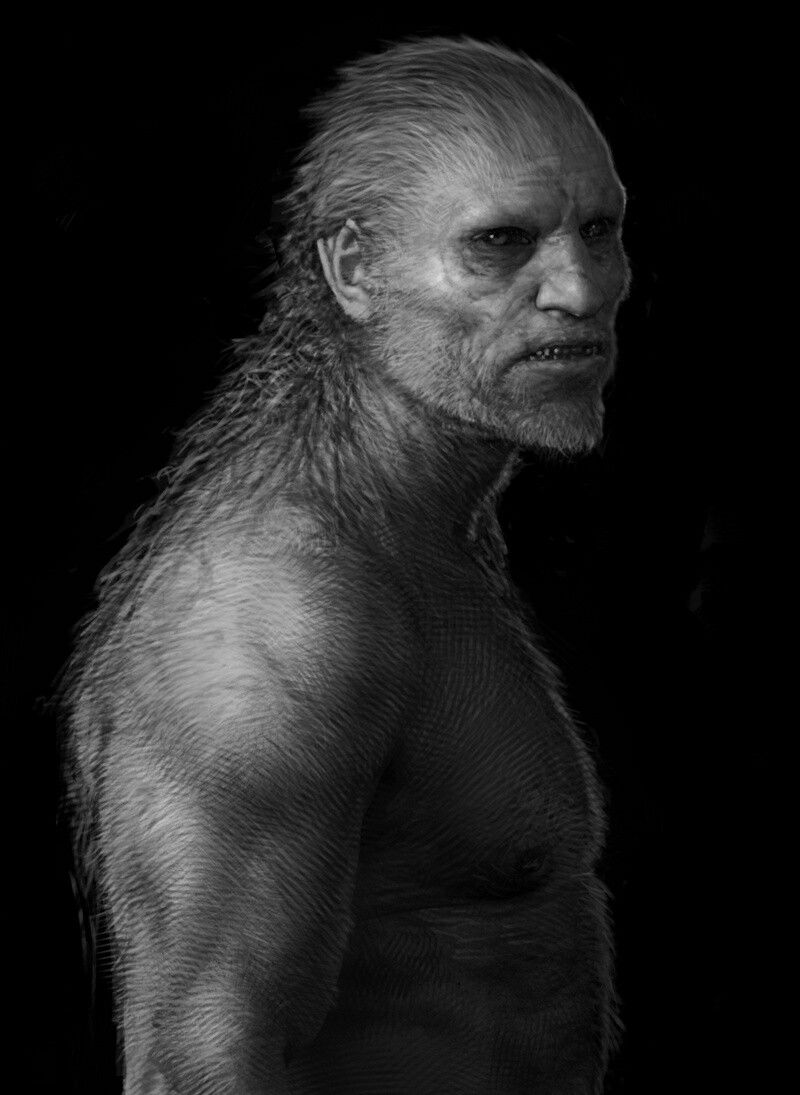 Fenrir Greyback Concept Art By Rob Bliss Greyback Conceptart Harrypotter Fantasy Portraits Dark Creatures Werewolf Art