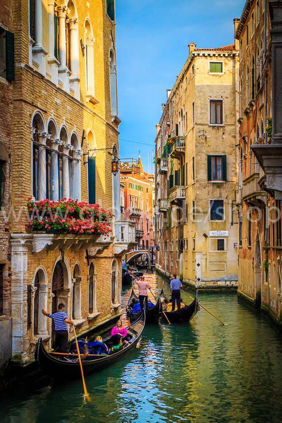 The Best Things to Do and See in Venice | Paxton Visuals ...