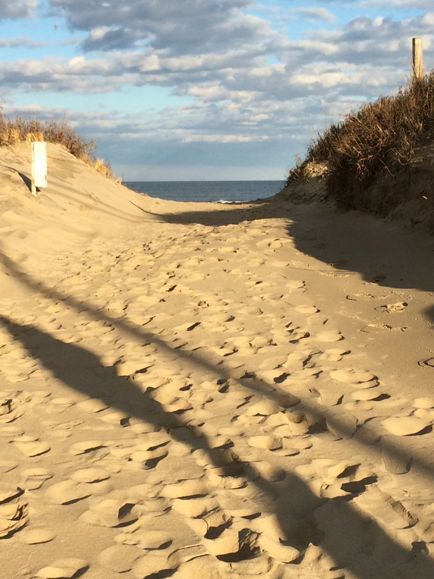 Here S A Beach Access Path Between The Sand Dunes At Sandbridge Virginia