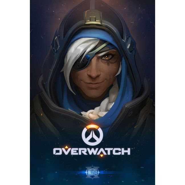 blizzcon 2016 overwatch poster