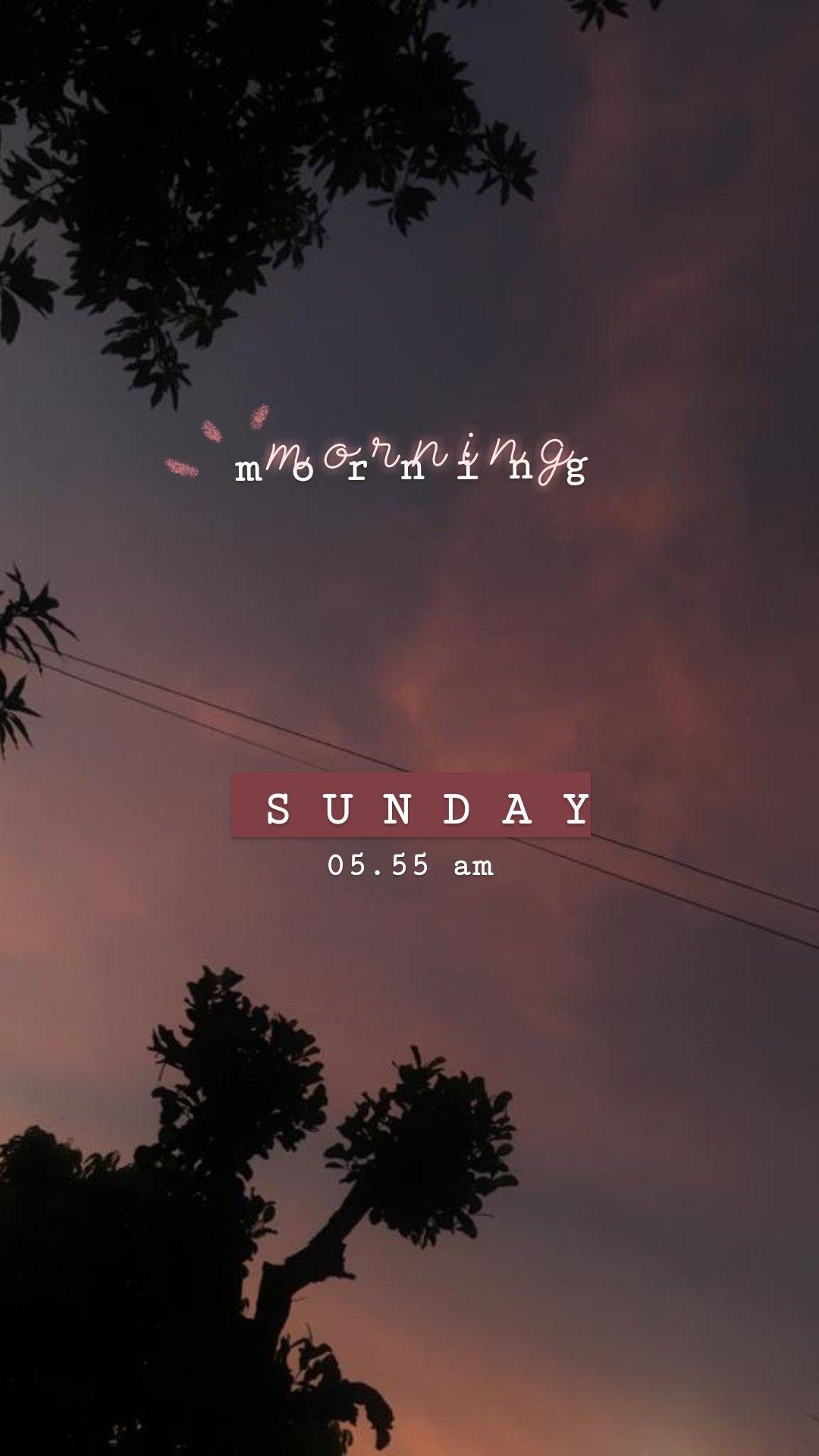 Aesthetic Morning Stories Dengan Gambar Bingkai Foto Fotografi