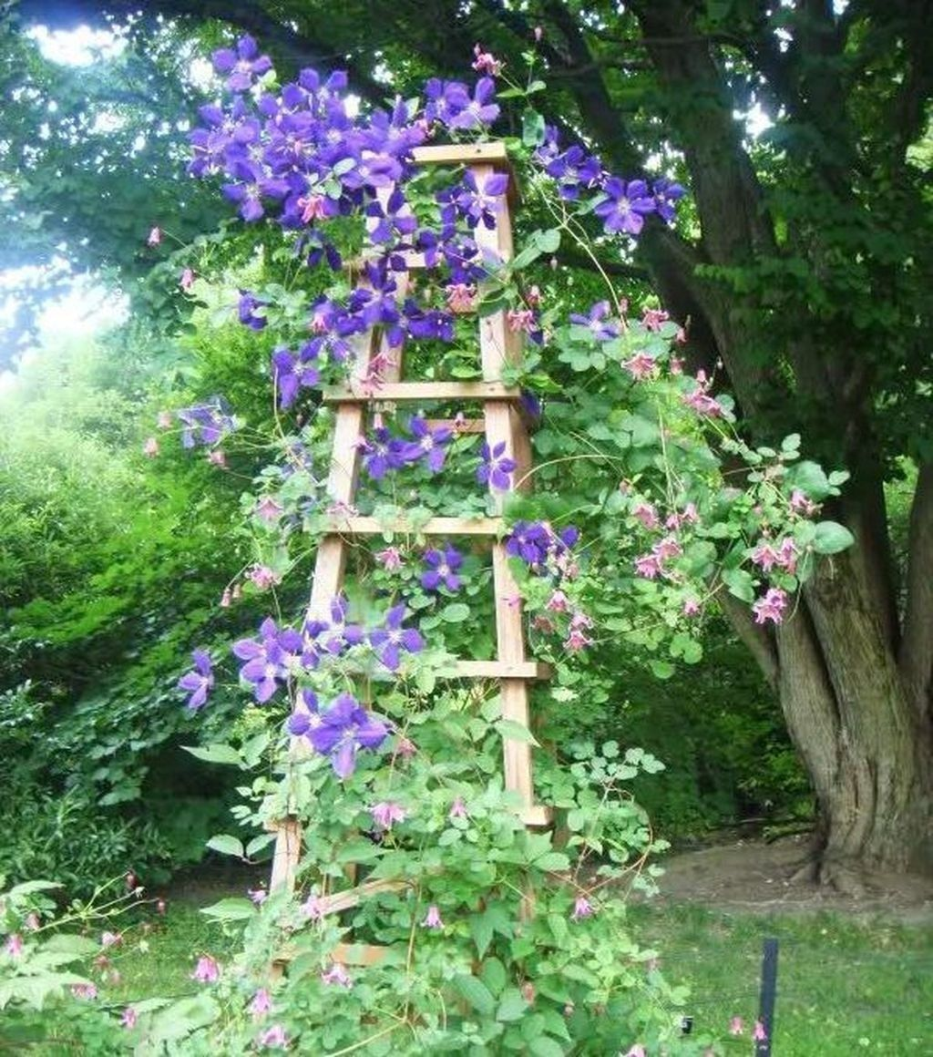 Best Ladder Garden Ideas For Your Backyard 22 (With images
