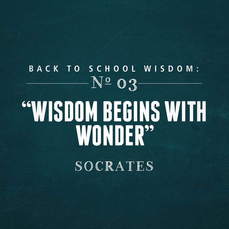 Back to School Wisdom | Back to School Quote  Make sure to enter our Back To School Giveaway! Click Here to Enter: http://woobox.com/xzo6pg