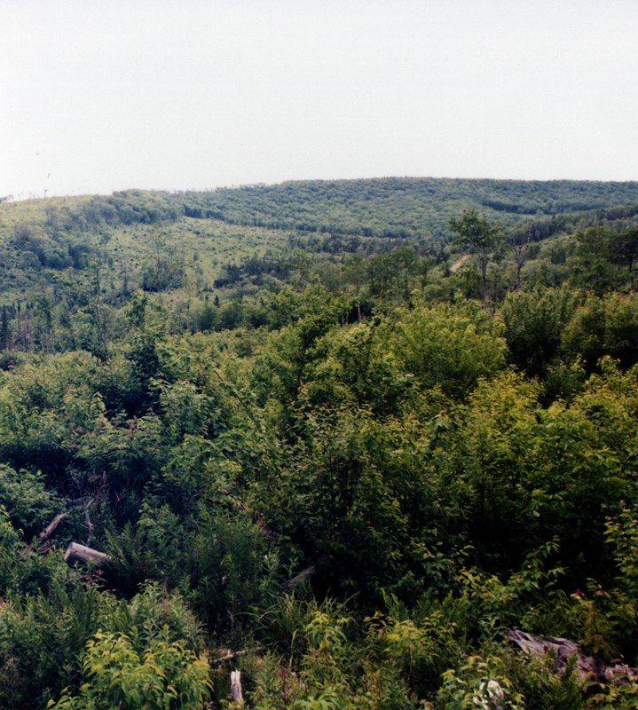 Lot 6 Nova Scotia
