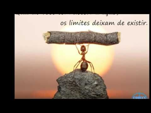 Trabalho Em Equipe Youtube Quotes About Strength Love
