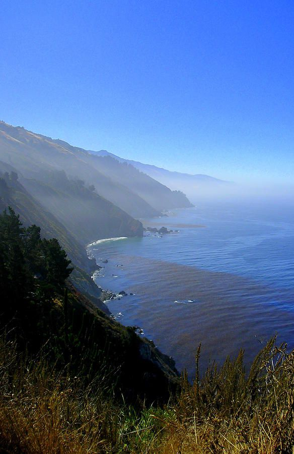✮ Oregon coast on a foggy morning  Looks like one of the places I took several pics even?