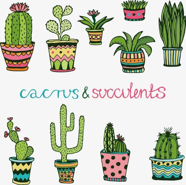 Vector Cartoon Cactus Cartoon Vector Cactus Vector Cactus Png Transparent Clipart Image And Psd File For Free Download Cactos Desenho Arte Com Cactos Cacto