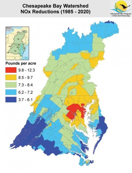 image result for effect of pollution on the chesapeake bay